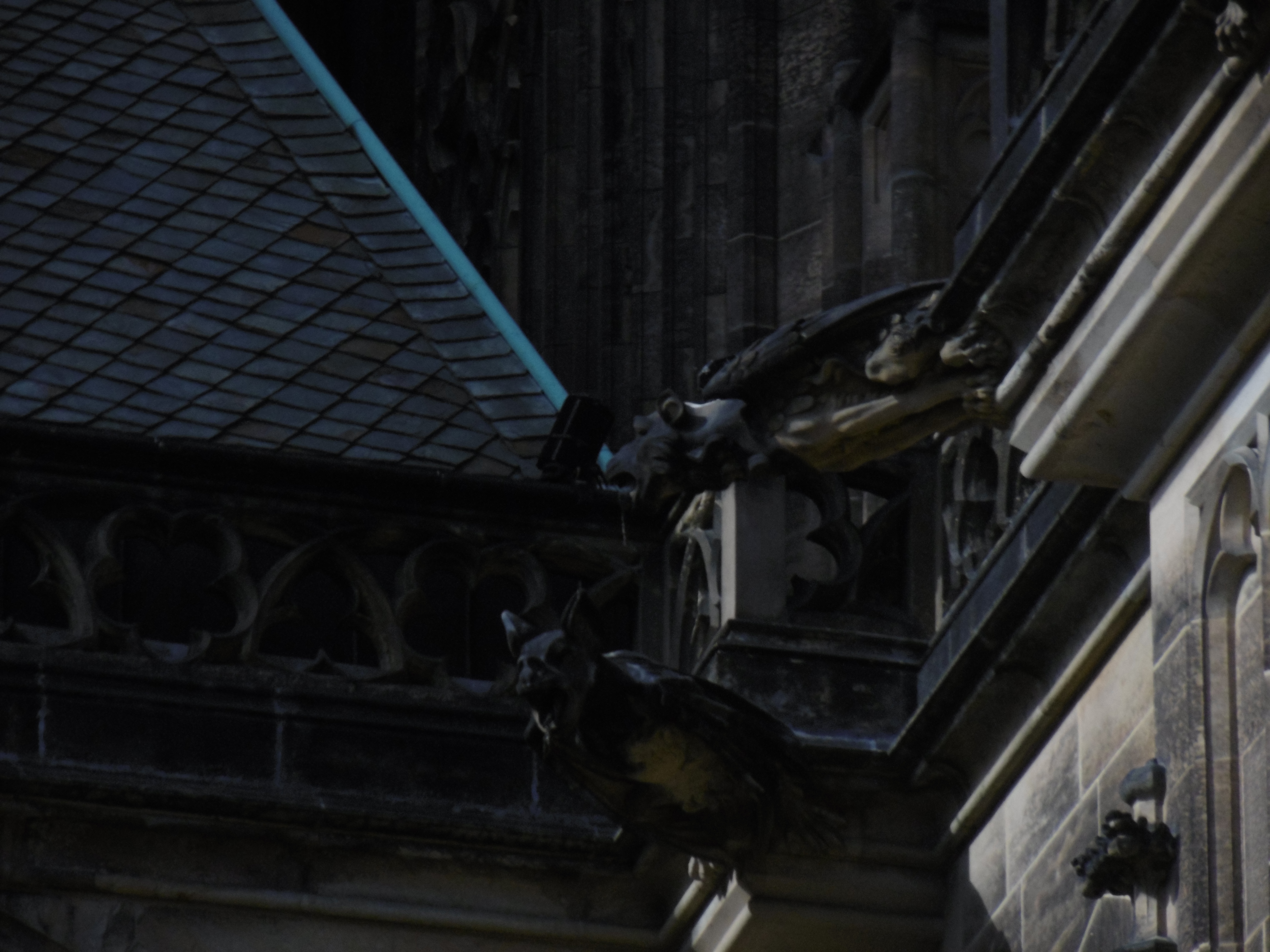 One of the gargoyles on the cathedral in Prague Castle.