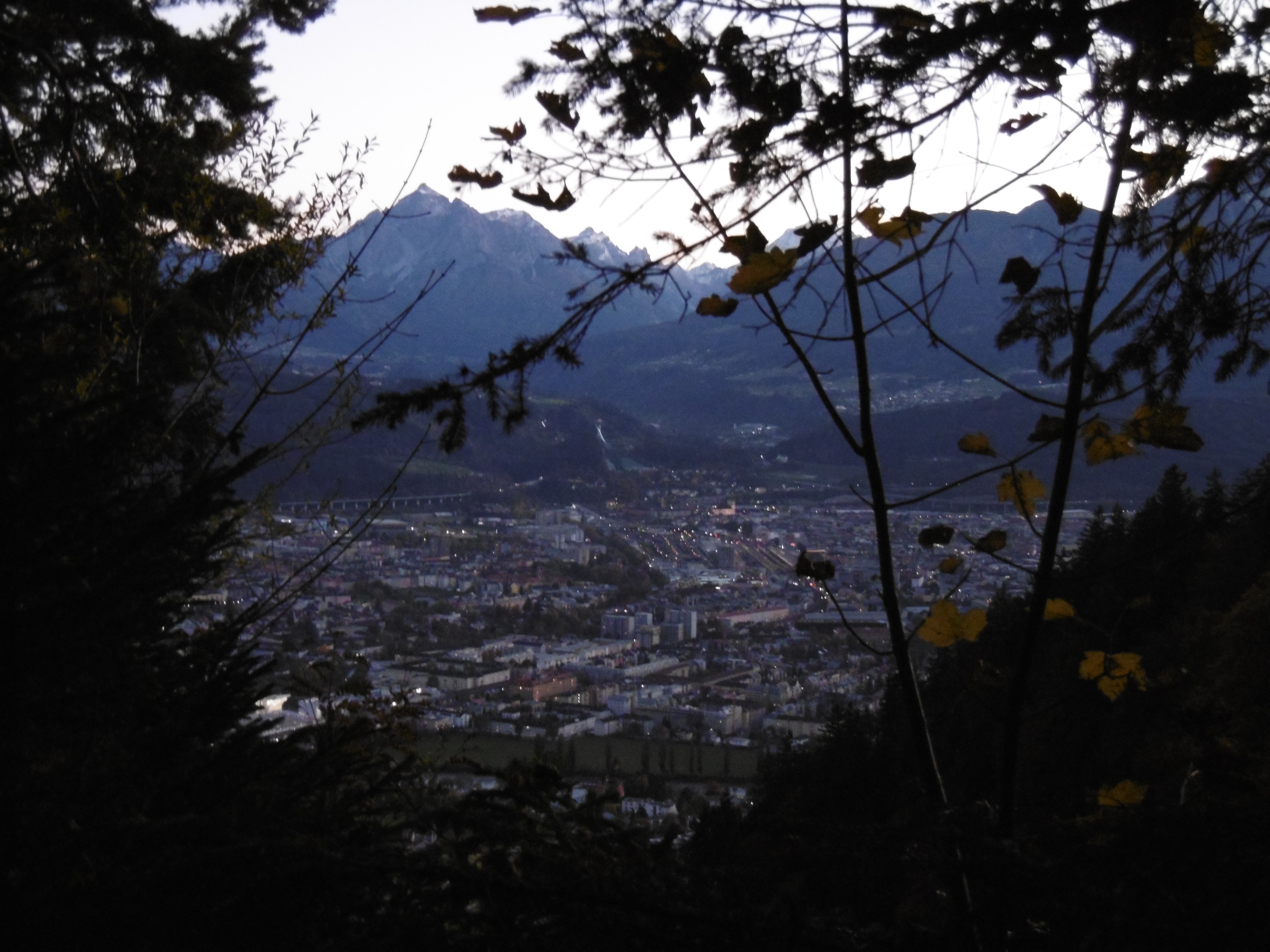 A view of Innsbruck looking south between trees over the river and town in the valley