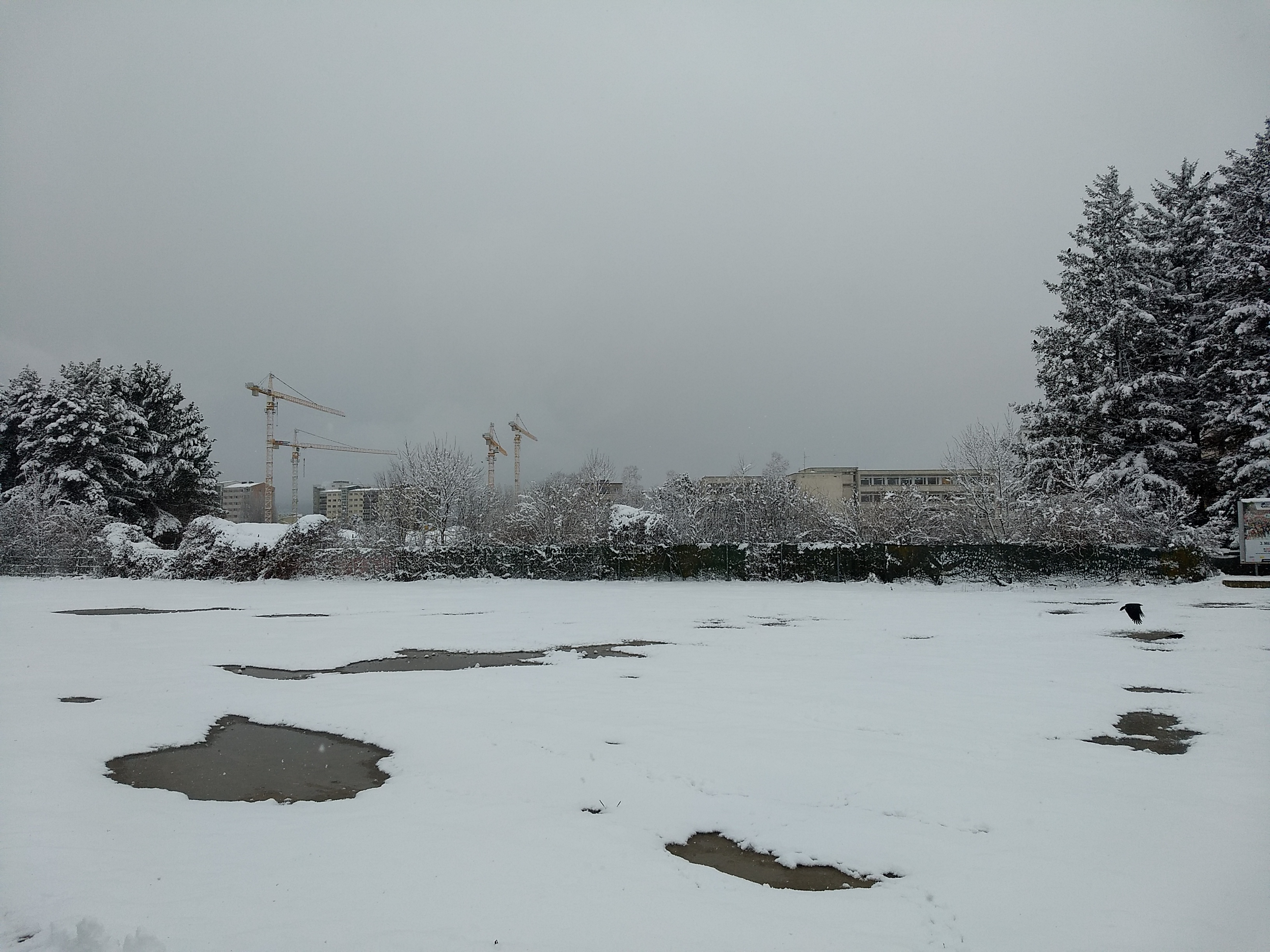 A snowy field with construction cranes in the distant background beyond a fence
